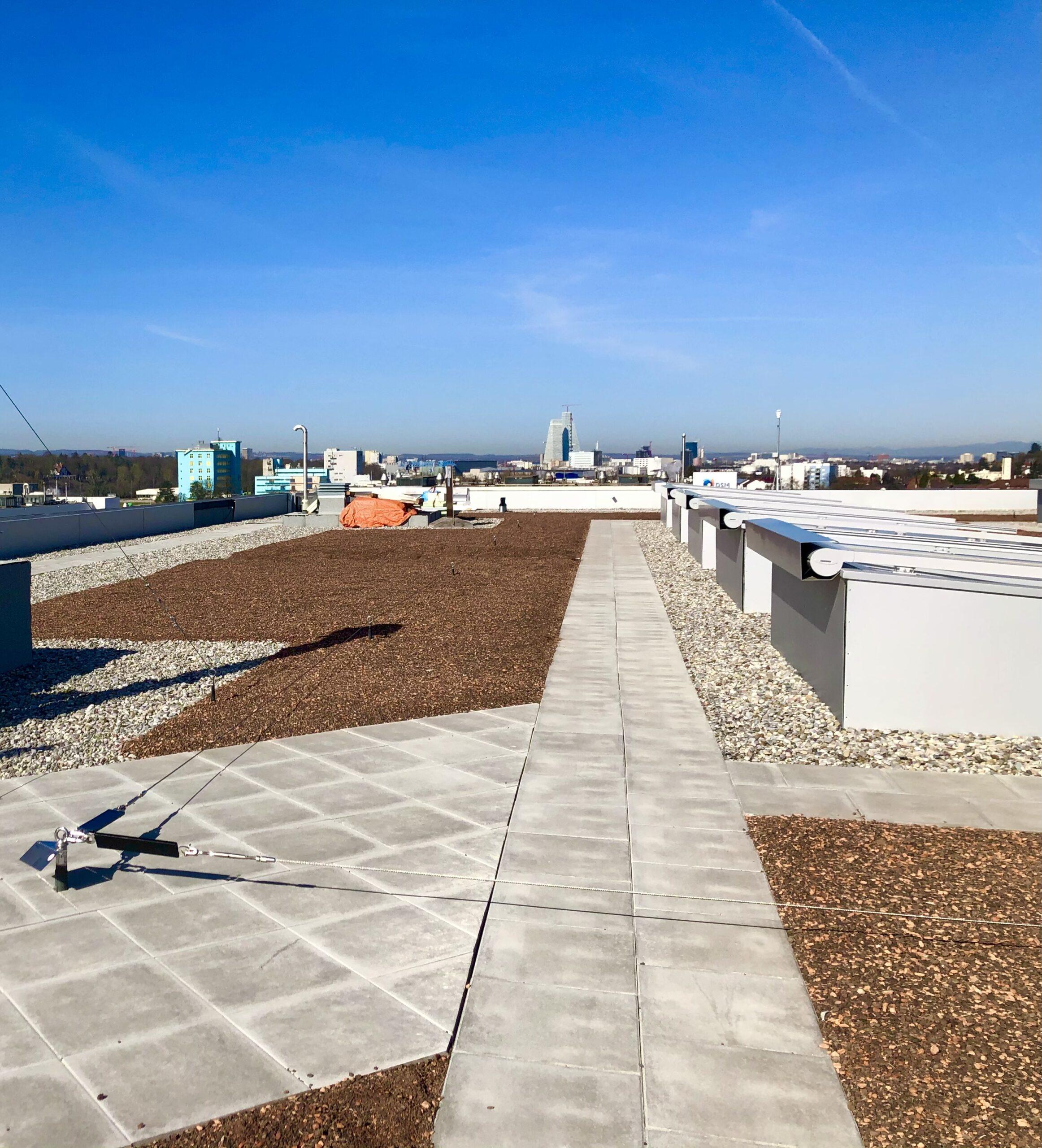 Dach im Frühjahr mit B1 und B2 der Roche im Hintergrund